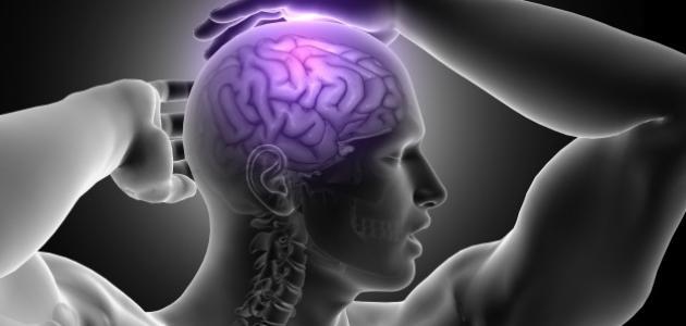 كيف تزيد من قدرات عقلك