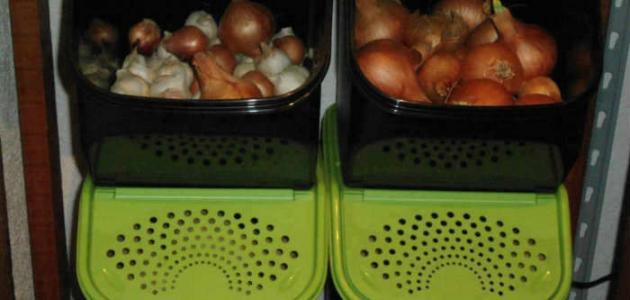 أين أضع البصل في المطبخ