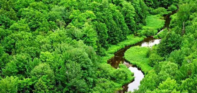 بحث حول الطبيعة