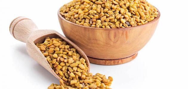 Image result for صور عشبة عود الحلبة