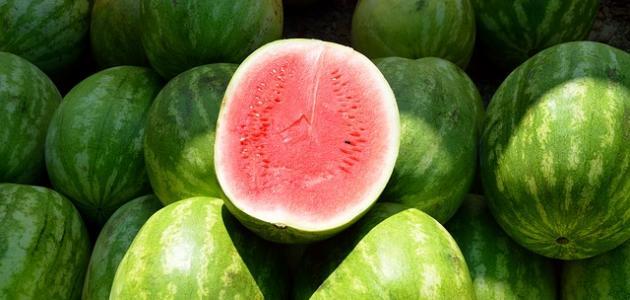 أنواع البطيخ