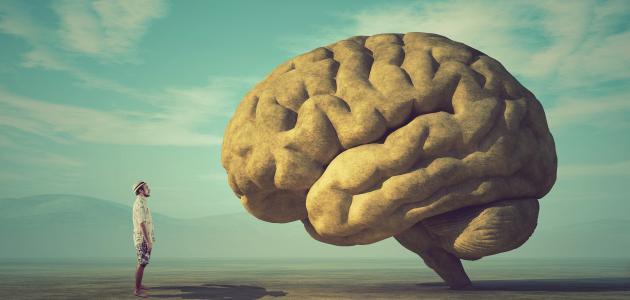 الإسلام دين العقل والعلم
