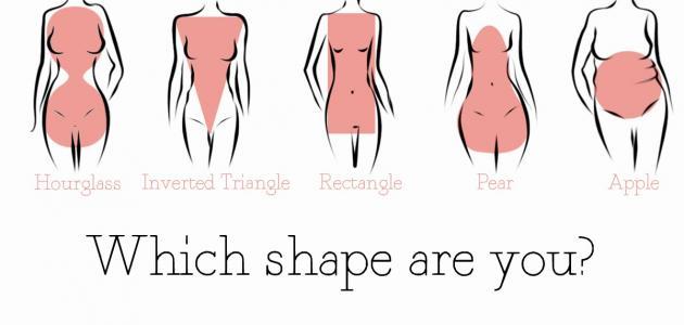 أنواع الأجسام