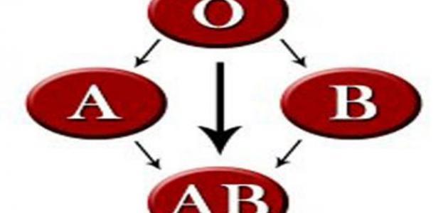 أنواع الدم