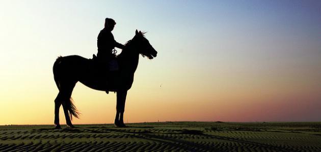 ابن تيمية شهاب الدين أبي المحاسن عبد الحليم