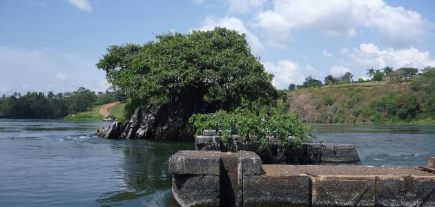 بحيرة إفريقية من منابع النيل