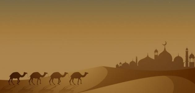 أسباب الهجرة النبوية