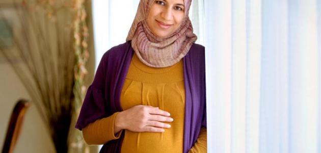 الحمل والصيام