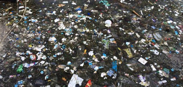 بحث حول تلوث البيئة