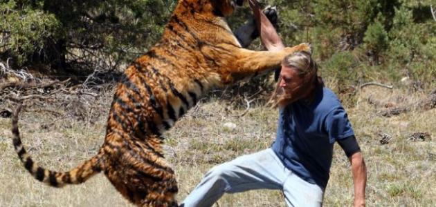 أقوى حيوان مفترس