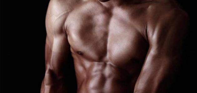 القوة العضلية