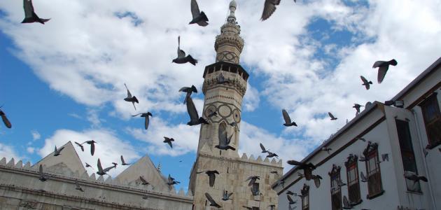الإسلام دين الوسطية والاعتدال