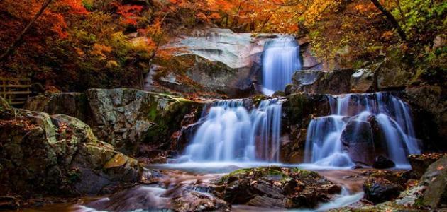 تعبير عن جمال الطبيعة