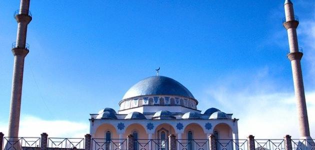 أين يوجد أكبر عدد من المساجد