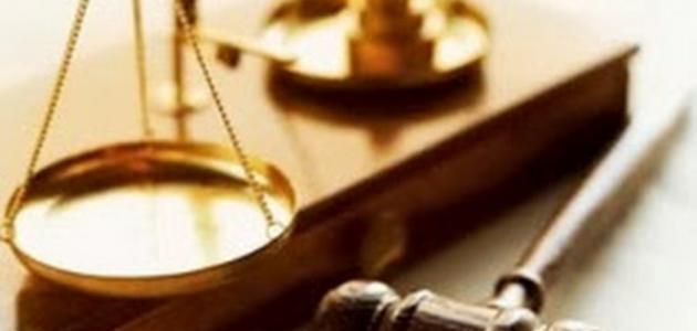 تعريف القانون العام
