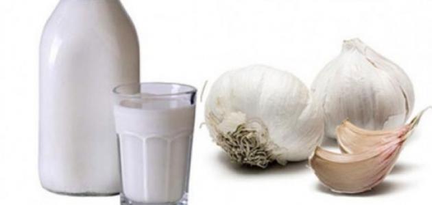 فوائد الثوم مع اللبن