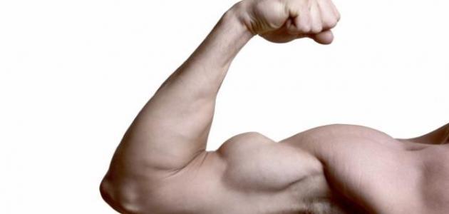 تمارين لتقوية عضلات اليد