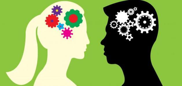 الفرق بين عقل الرجل والمرأة
