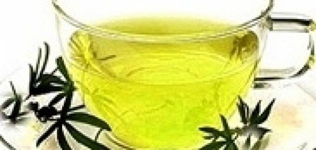 علاج إدمان الترامادول بالأعشاب