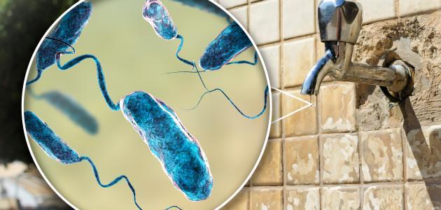 الأمراض الناتجة عن تلوث المياه