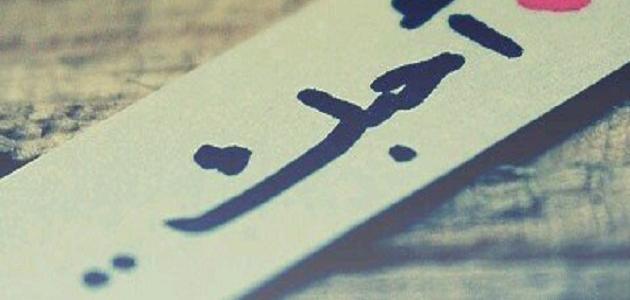 احبك لا ادري حدود محبتي