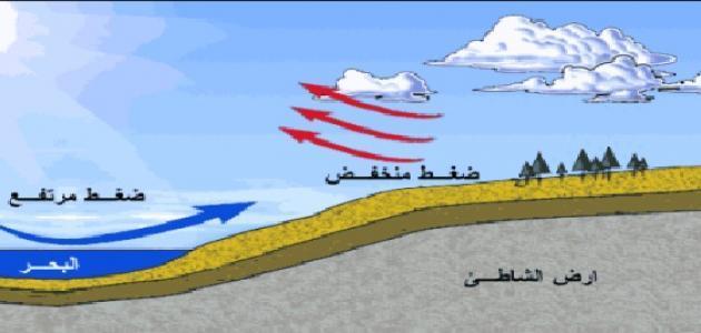 الضغط الجوي والرياح