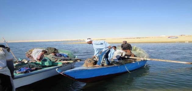 بحيرة مريوط