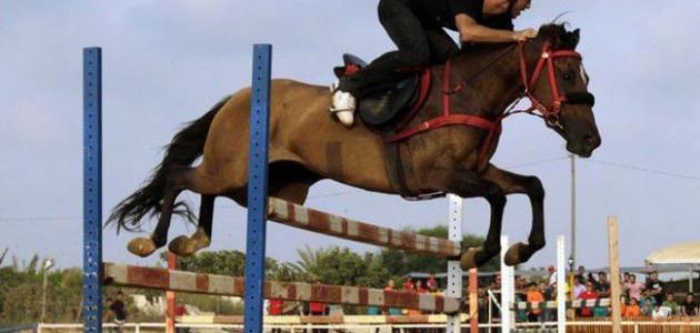 بحث عن الرياضة في الإسلام