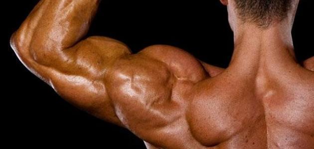 أعراض تمزق العضلات