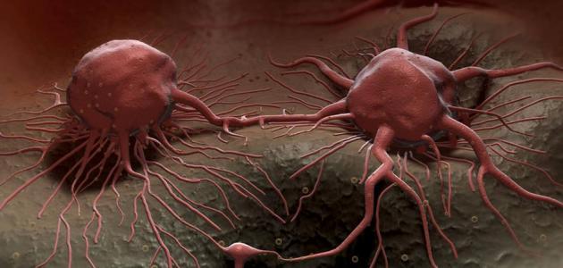 العلاقة بين مرض السرطان ودورة حياة الخلية