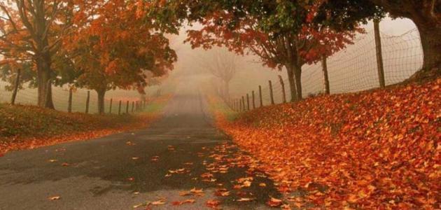تعبير كتابي عن فصل الخريف