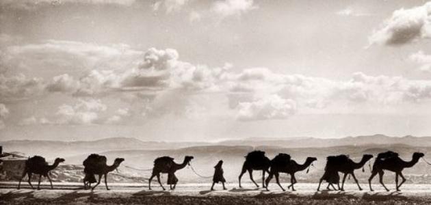 بحث عن هجرة الرسول صلى الله عليه وسلم