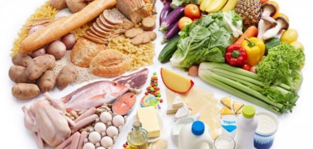 بحث عن الغذاء وصحة أجسامنا
