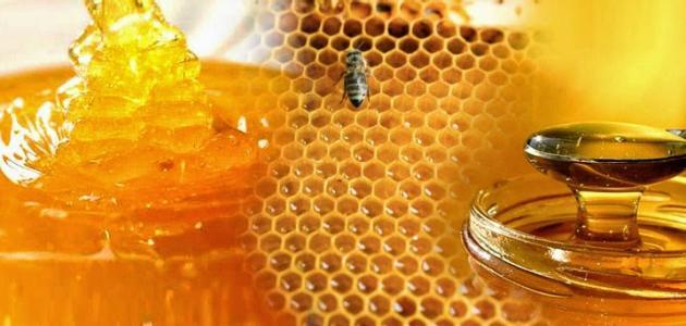 أنواع عسل النحل