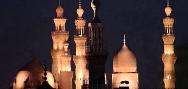 تاريخ المسلمين
