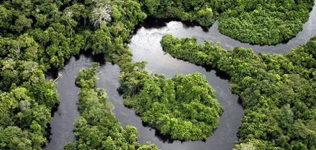 أهم الأنهار في العالم