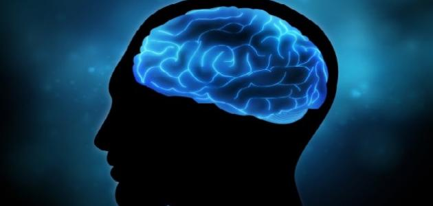 أثر نعمة العقل على الإنسان