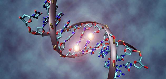 تعريف الهندسة الوراثية