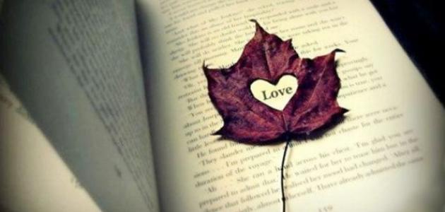 أجمل الحكم في الحب