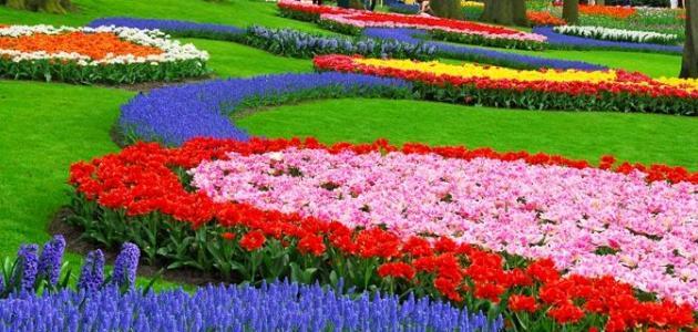 مقال عن عيد الربيع