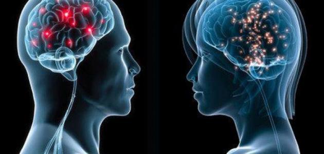 04fe4f29bb945 الفرق بين عقل الرجل وعقل المرأة - موضوع