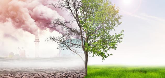 تعريف التلوث وأنواعه