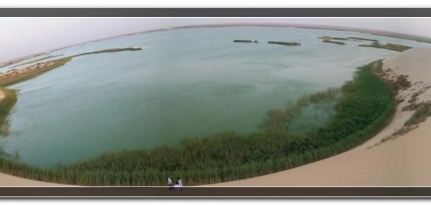 بحيرة الأصفر