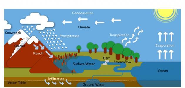 بحث حول دورة الماء في الطبيعة