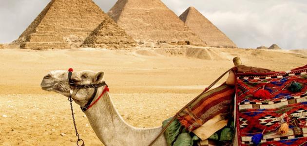 بحث عن أنواع السياحة في مصر