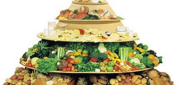 تعريف الهرم الغذائي