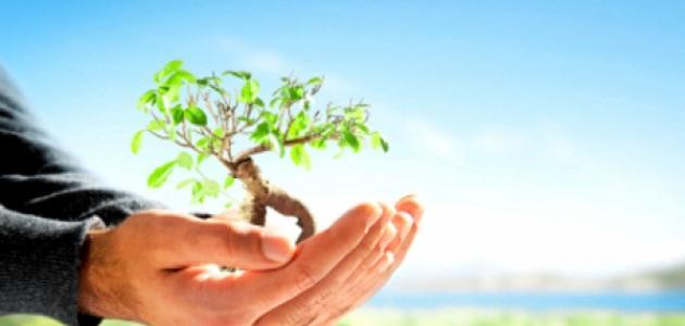 موضوع عن المحافظة على البيئة