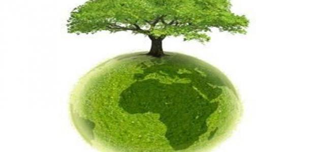 بحث عن البيئة والسكان