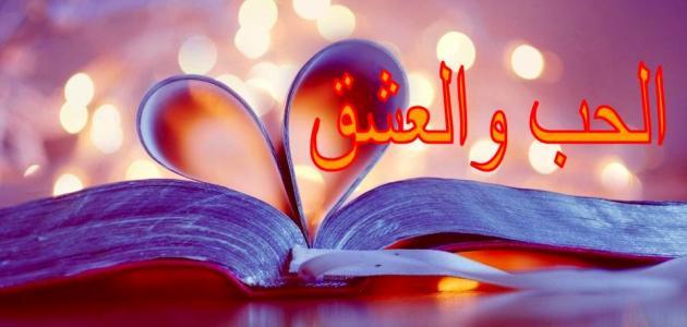 كلام عن العشق بجنون للحبيب 7