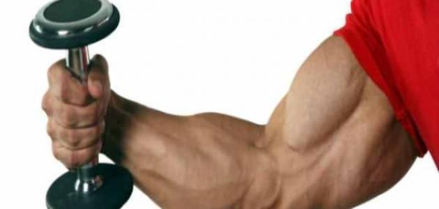 تمارين لعضلة اليد